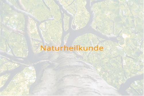Link zu Naturheilkunde